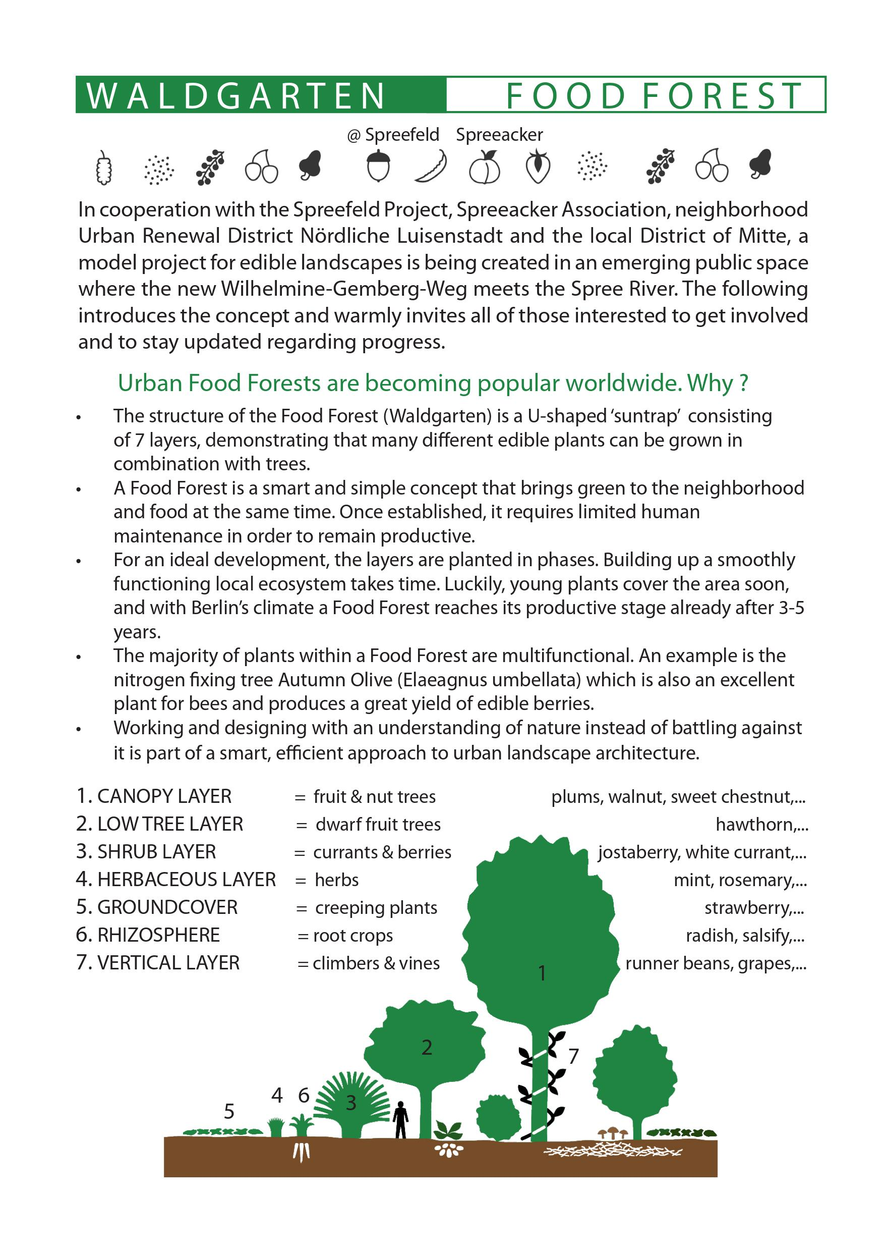 Flyer Food Forest_1